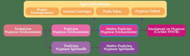 Maître Praticien Hypnose Organigramme