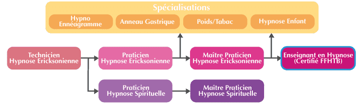 Formation Enseignant en Hypnose organigramme